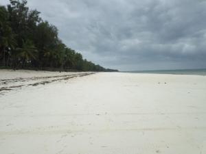Diani Beach 2020-05-19